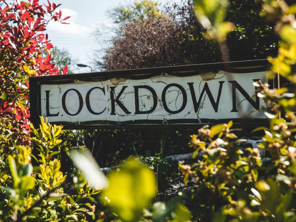 road sign surrounded by trees saying Lockdown